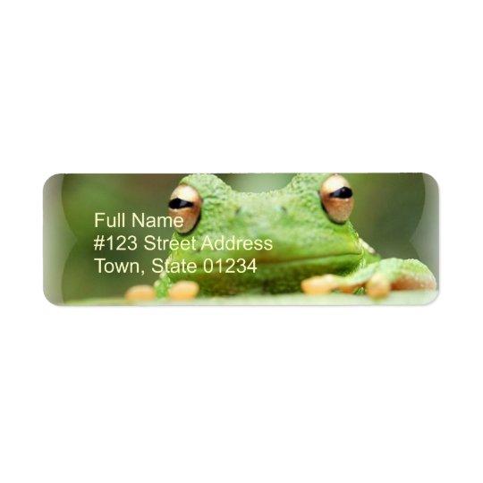 Frog Eyes Return Address Label