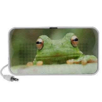 Frog Eyes Speakers