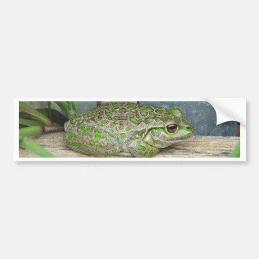 frog fence bumper sticker