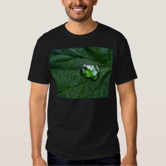 Frog Green Shirt