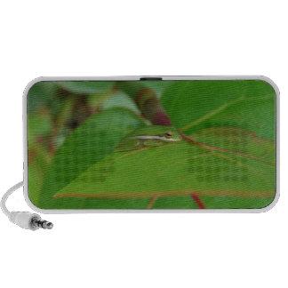 Frog Green Travelling Speaker