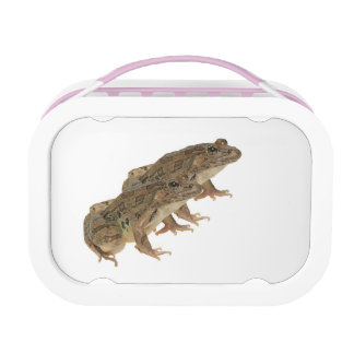 Frog image for Pink-yubo-Lunch-Box Lunchboxes