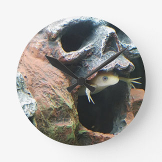 Frog in a Skull Round Clock