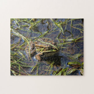 Frog in river jigsaw puzzle
