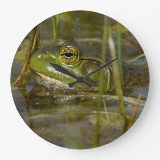 Frog in the Water Clock