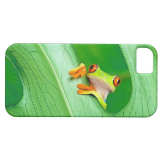 frog iPhone 5 cover