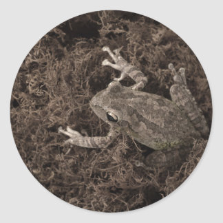 frog left on moss sepia tone sticker