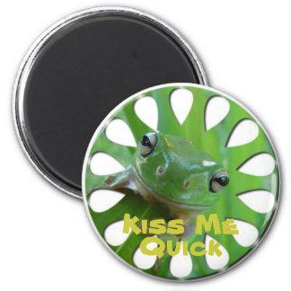Frog Lover Magnets