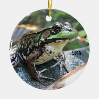 FROG Lovers 2018 ornament