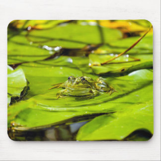 Frog Mouse Pad