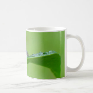 Frog on a Leaf Mug