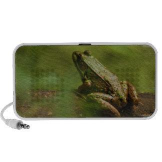 Frog on Log Portable Speakers