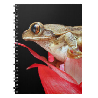 Frog on red flower beautiful photo notebook