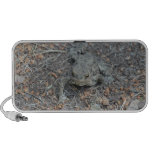 Frog On The Forest Floor iPod Speakers