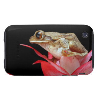 Frog red flower photo iphone 3G case mate tough iPhone 3 Tough Case