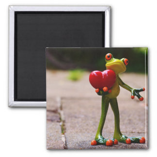 Frog red heart square magnet