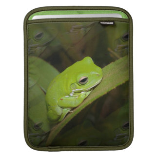 Frog Reflections iPad Sleeve
