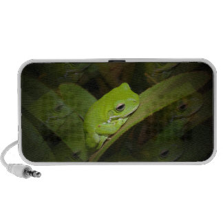 Frog Reflections Speakers
