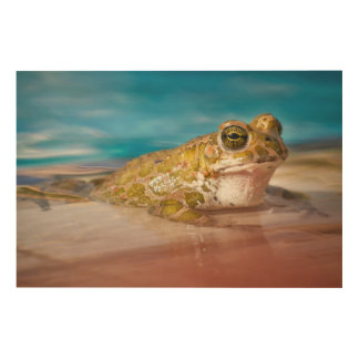Frog resting by the pool wood wall decor