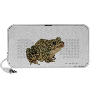 Frog shadow travel speakers