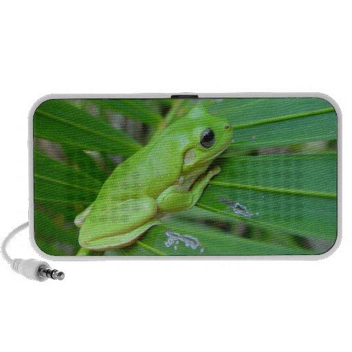 Frog Speakers