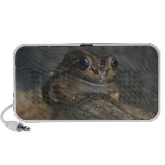 Frog Notebook Speaker