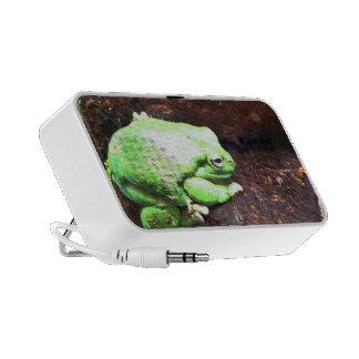 Frog Travel Speaker