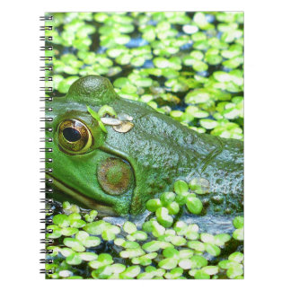 frog spiral note book