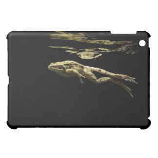 frog swimming in the dark just below the surface case for the iPad mini