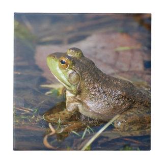 Frog Tile