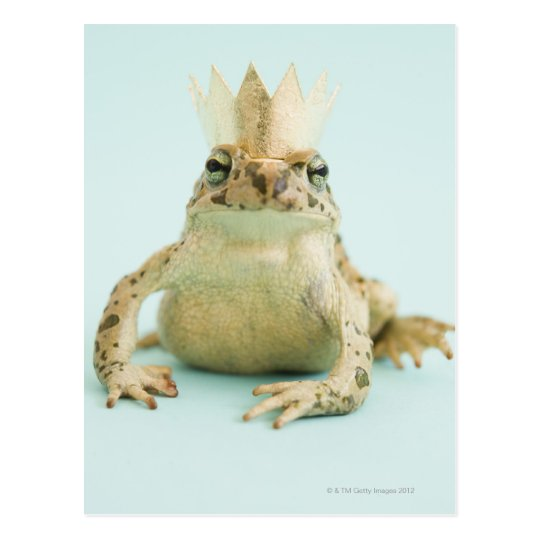 Frog wearing crown postcard