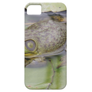 Froggy Barely There iPhone 5 Case