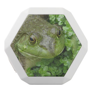 Froggy White Boombot Rex Bluetooth Speaker