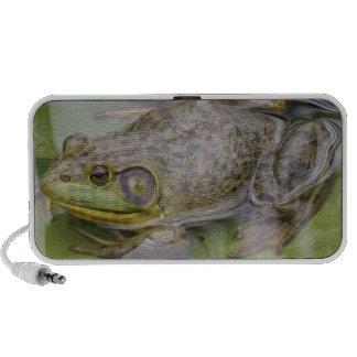 Froggy Mini Speakers