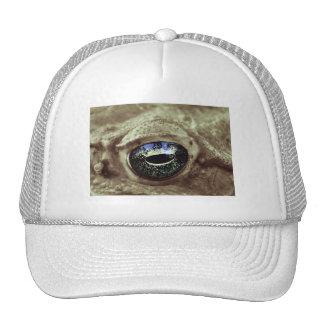 frogi mesh hats