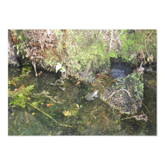 Frogs and Frog Spawn in a Pond Invitation