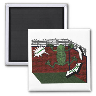 Frogs Freedom Square Magnet