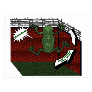 Frogs Freedom Postcard
