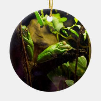 Frogs in a Tree Ceramic Ornament
