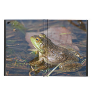 Frogs iPad Air Case