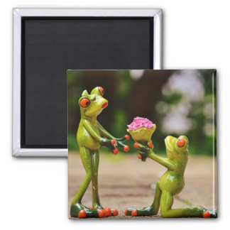 Frogs lovers square magnet