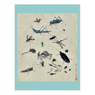 Frogs, snails, and insects post card