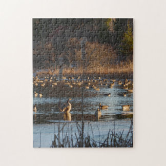FROLICKING GEESE. 11x14 Photo Puzzle with Gift Box
