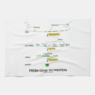 From Gene To Protein Tea Towel