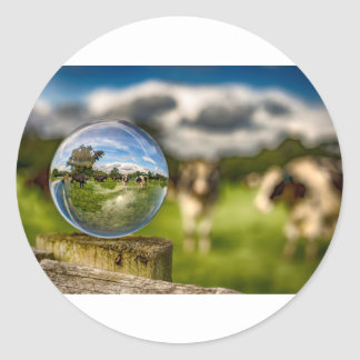 From Grass To Glass Classic Round Sticker