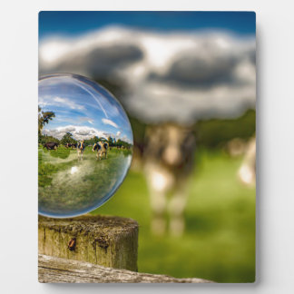 From Grass To Glass Display Plaque