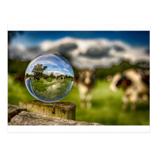 From Grass To Glass Postcard