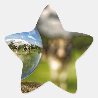 From Grass To Glass Star Sticker