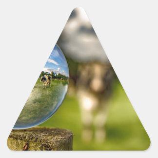From Grass To Glass Triangle Sticker