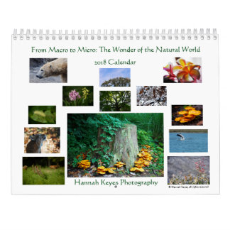 From Macro to Micro: Wonder of the Natural World Wall Calendars